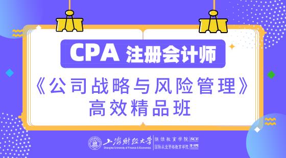 上海財經大學CPA《公司戰略與風險管理》高效精品班