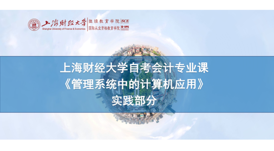 上海財經大學自考會計專業課《管理系統中的計算機應用》實踐課